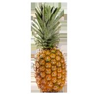 ananas-golden
