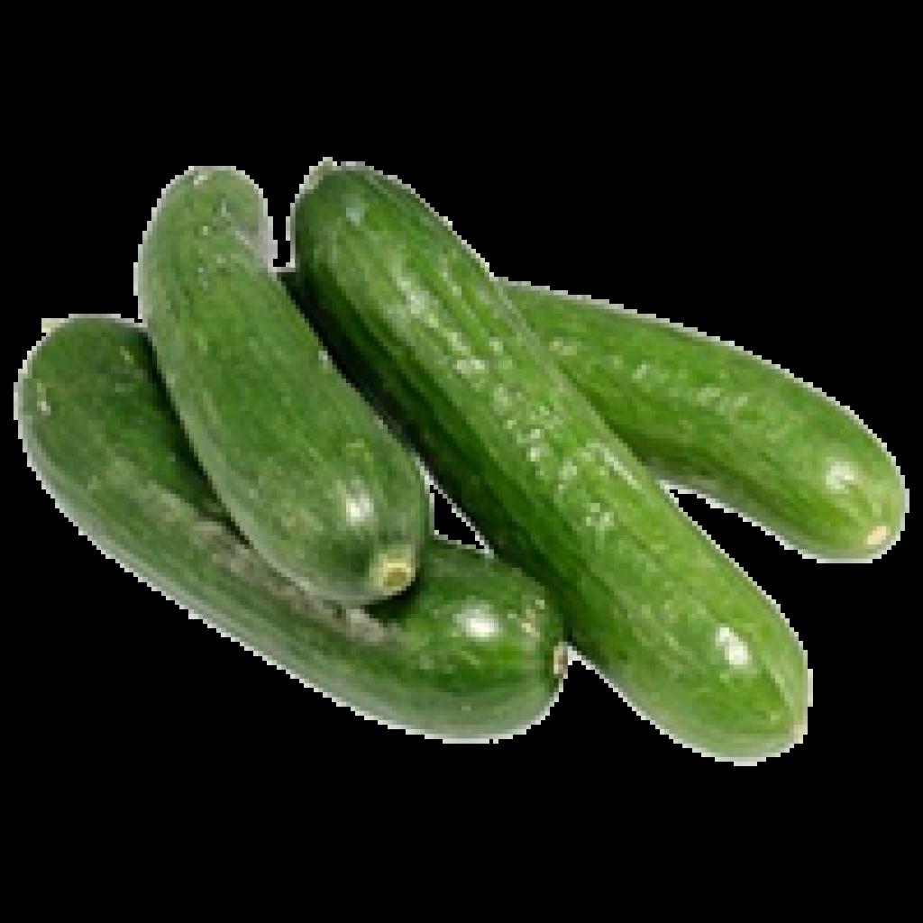 concombres-des-champs