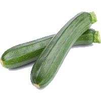 courgettes-vertes-zucchini