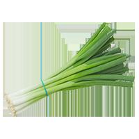 oignons-verts