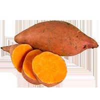 patates-sucrees-yam