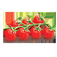 tomates-campari