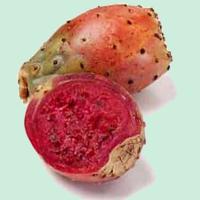 poire-cactus